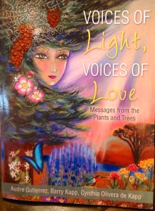 Voices of Light Book Cover